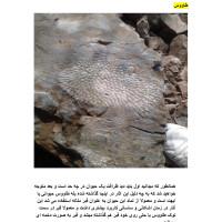 کتاب اسرار علایم ونشانه های باستانی