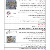 کتاب الاشارات – مجموعه علائم نشانه های دفینه وگنج به زبان عربی