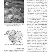کتاب فنجان نماها در هنر صخره ای کردستان