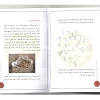 کتاب آیین ها و روش های تدفین